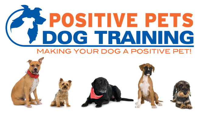 Image result for positive pets dog training boise idaho images only